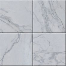 Calacatta Carrara Gold